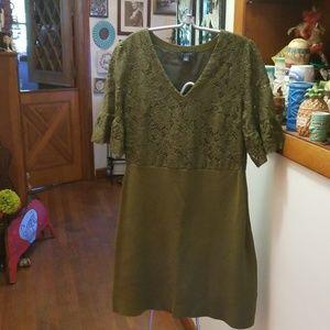 Ann Taylor  flutter lace sleeve dress